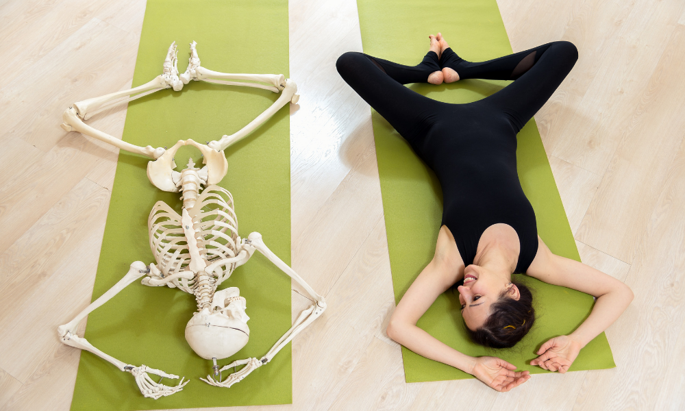 Yoga Anatomy: The Art and Science of a Human, Being