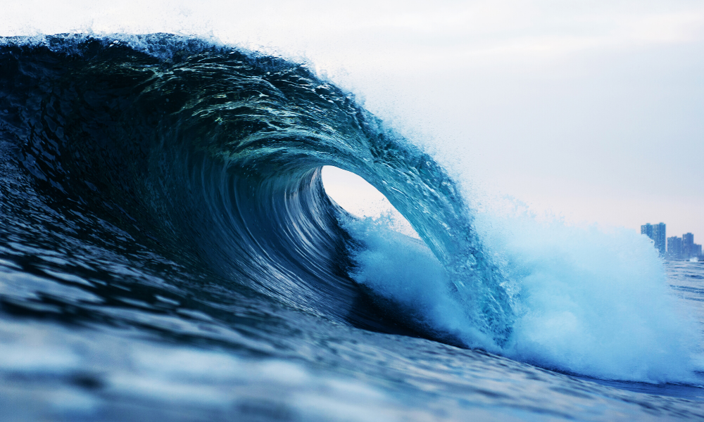 Ride the Wave: Taking Yoga off the Mat